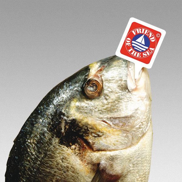 Arrow Tag pez